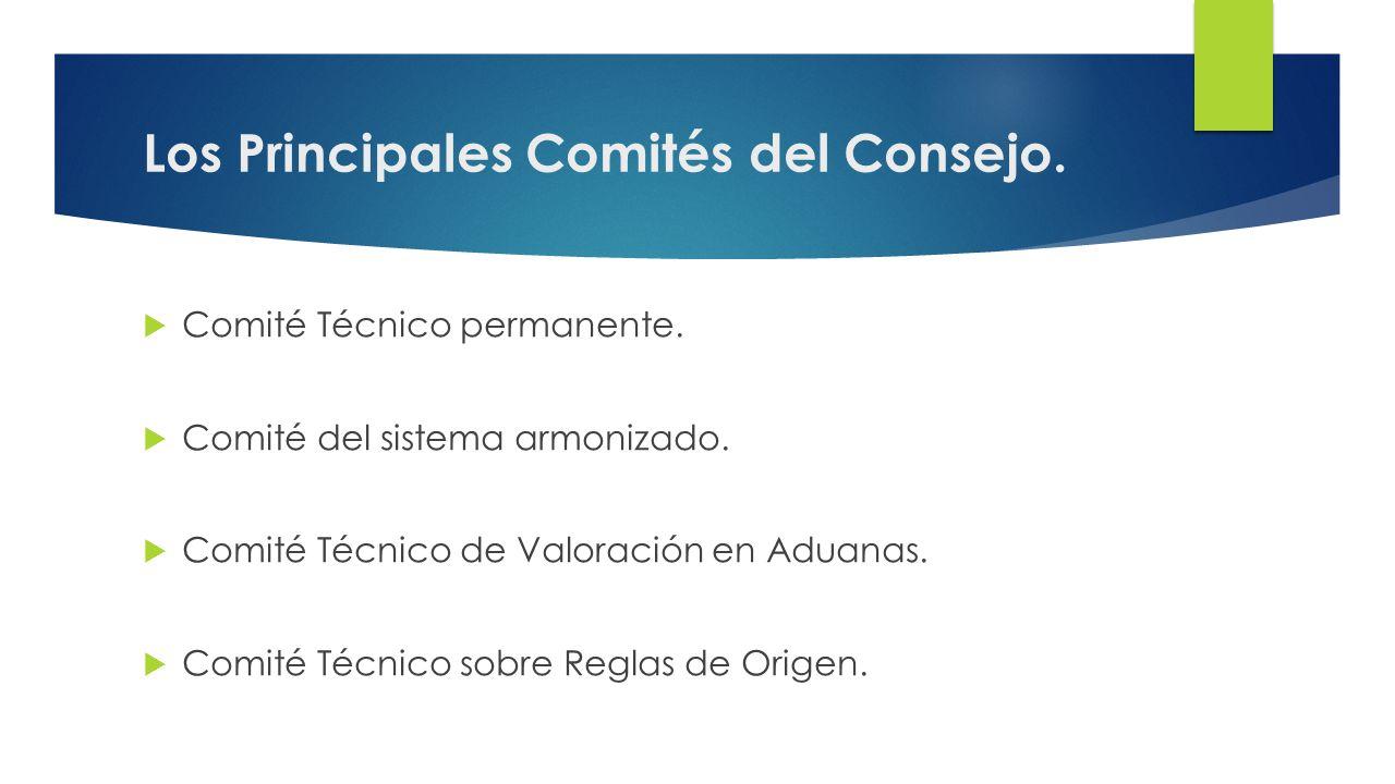 Los Principales Comités del Consejo.