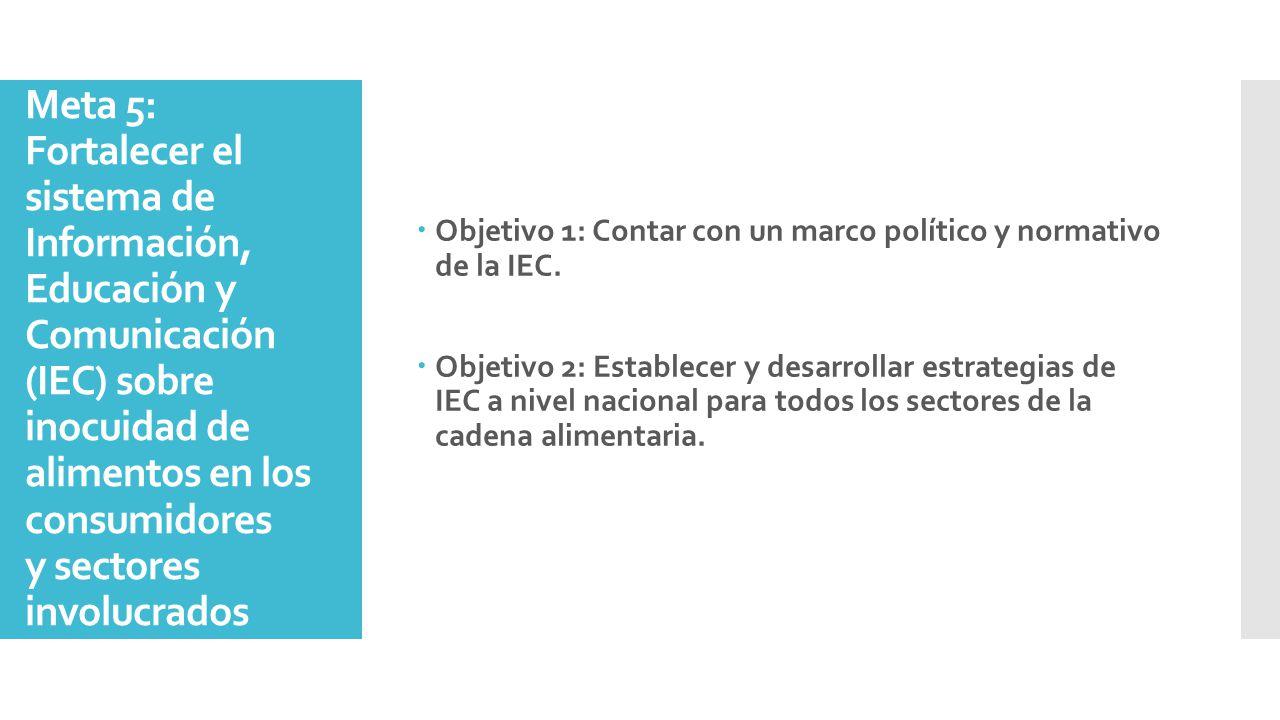 Objetivo 1: Contar con un marco político y normativo de la IEC.