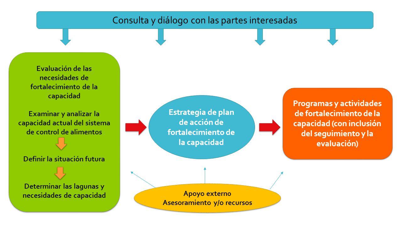Consulta y diálogo con las partes interesadas