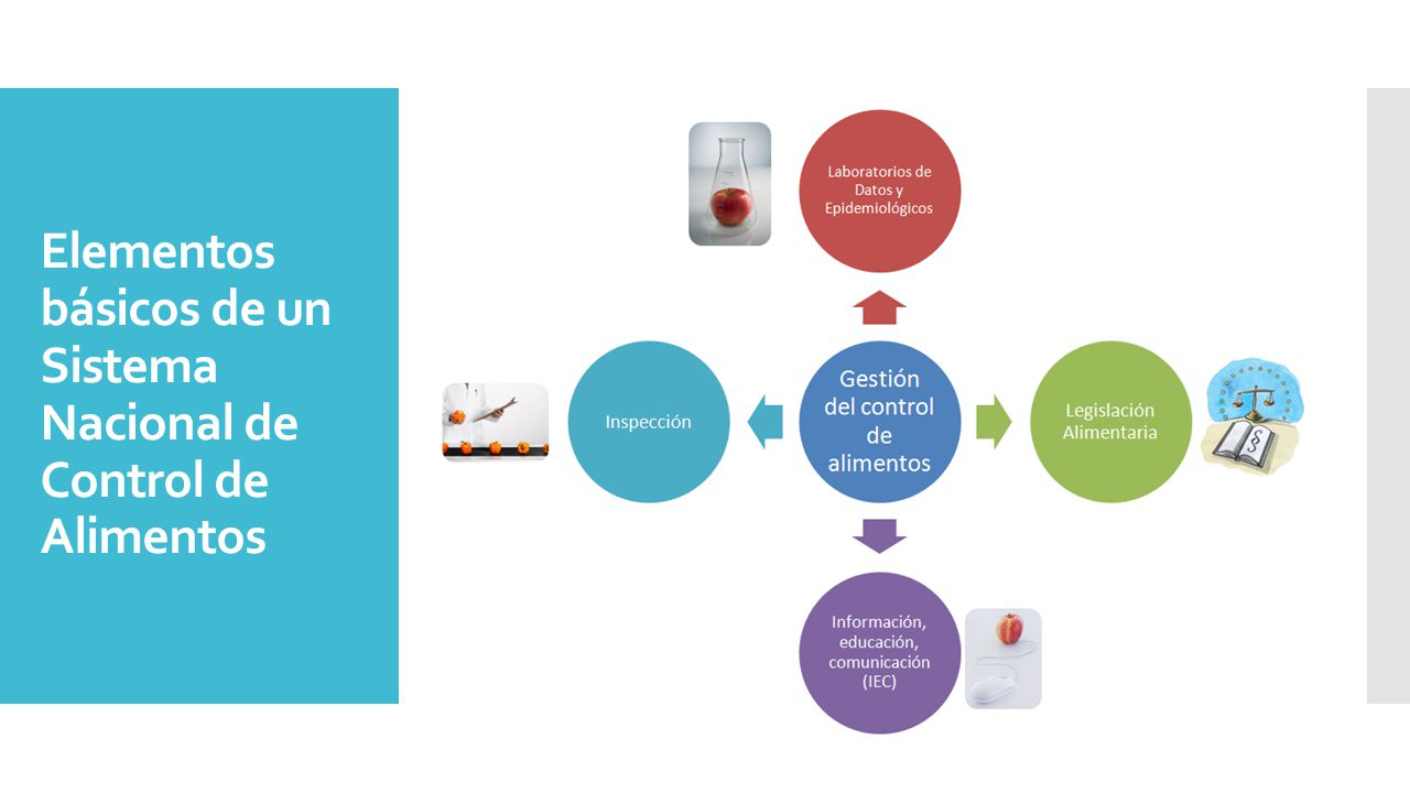 Elementos básicos de un Sistema Nacional de Control de Alimentos