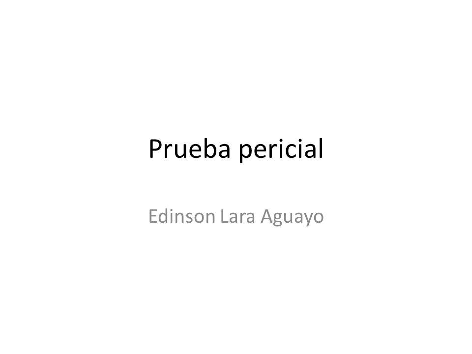 Prueba pericial Edinson Lara Aguayo