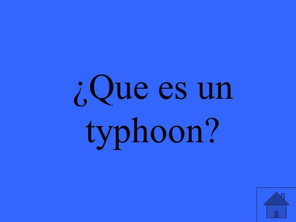 ¿Que es un typhoon