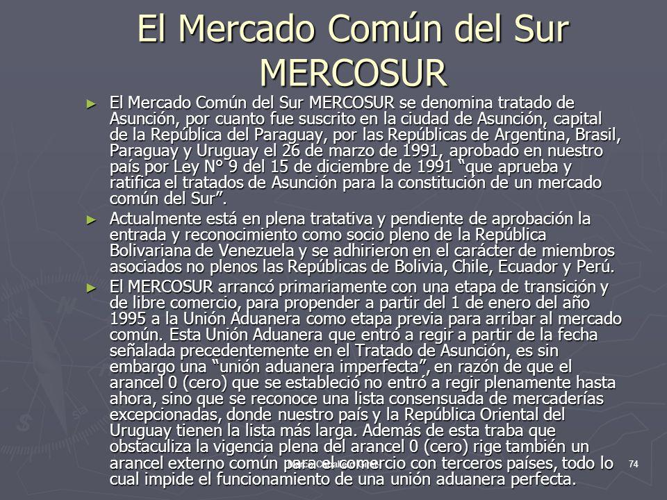 El Mercado Común del Sur MERCOSUR