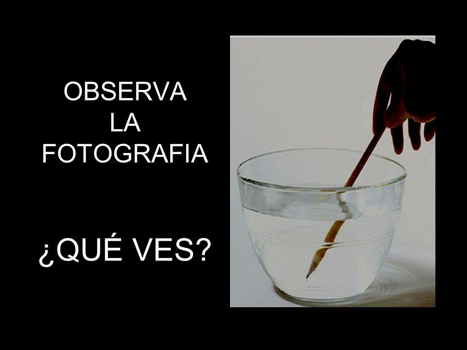 OBSERVA LA FOTOGRAFIA ¿QUÉ VES