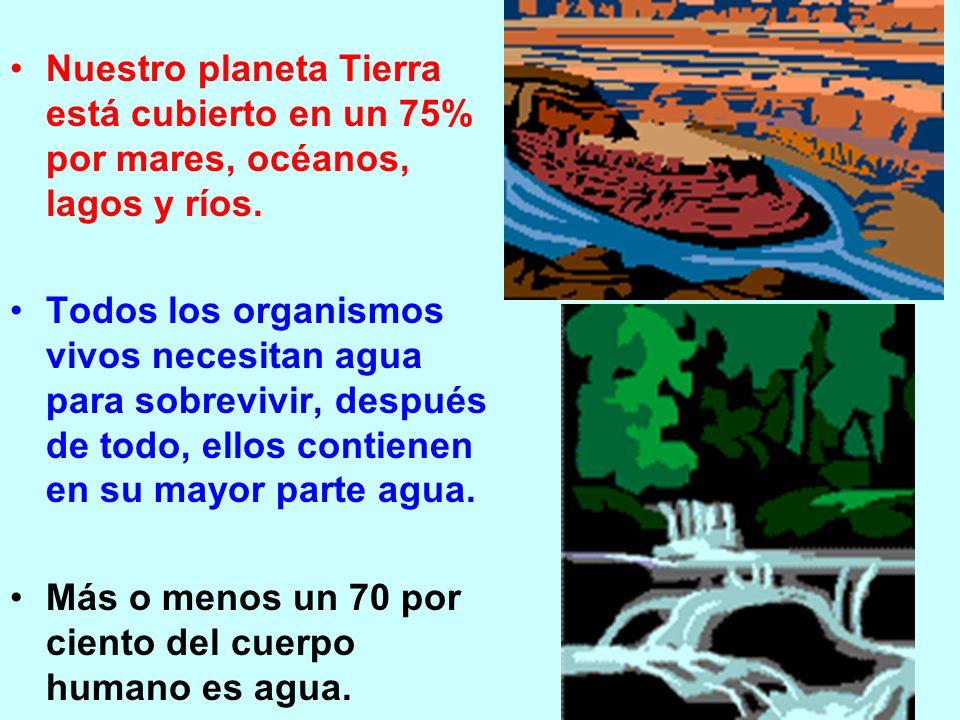 Nuestro planeta Tierra está cubierto en un 75% por mares, océanos, lagos y ríos.