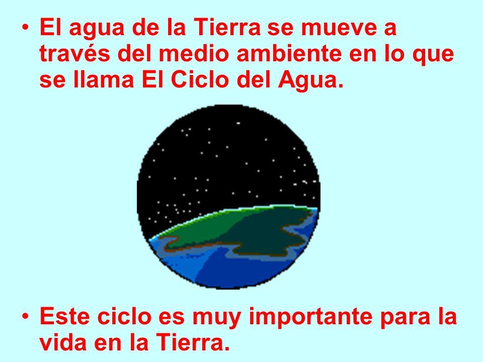 El agua de la Tierra se mueve a través del medio ambiente en lo que se llama El Ciclo del Agua.