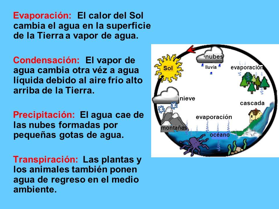 Evaporación: El calor del Sol cambia el agua en la superficie de la Tierra a vapor de agua.