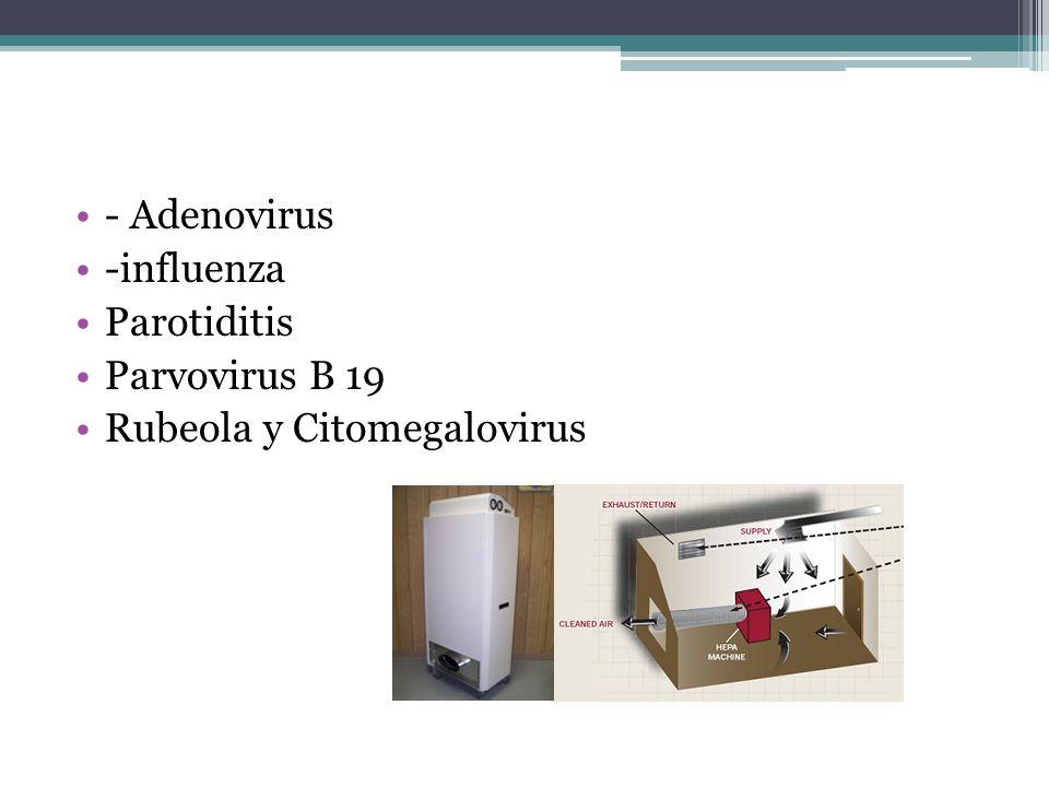 - Adenovirus -influenza Parotiditis Parvovirus B 19 Rubeola y Citomegalovirus