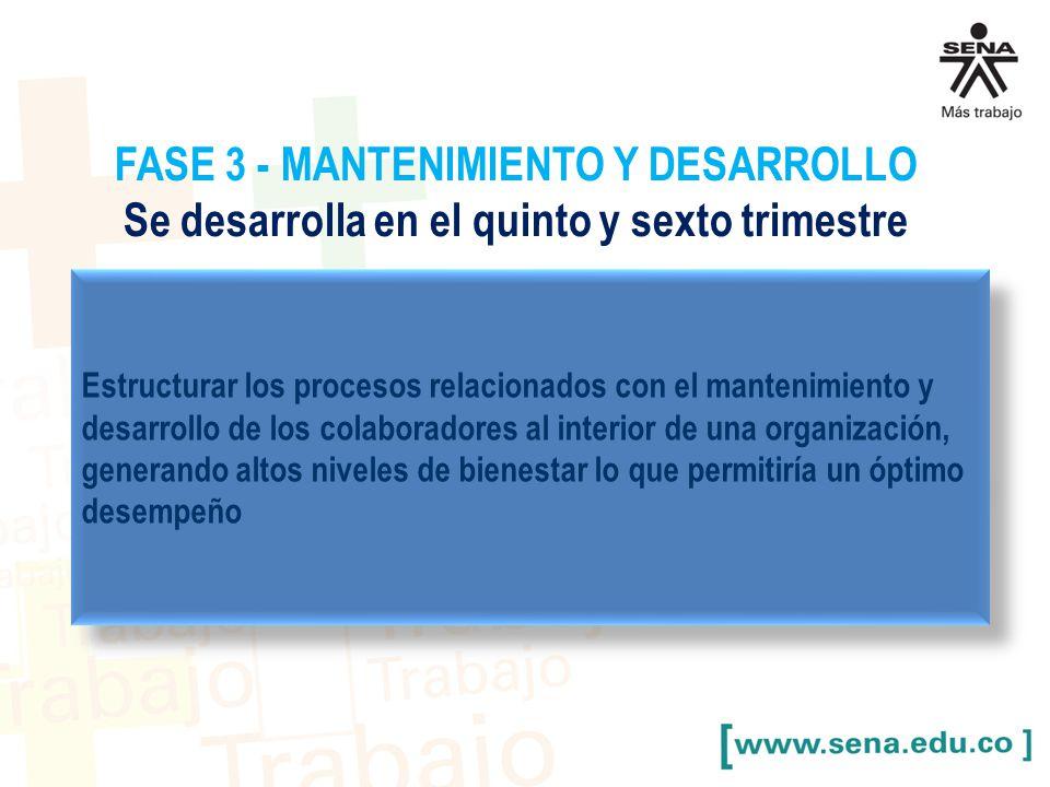 FASE 3 - MANTENIMIENTO Y DESARROLLO Se desarrolla en el quinto y sexto trimestre