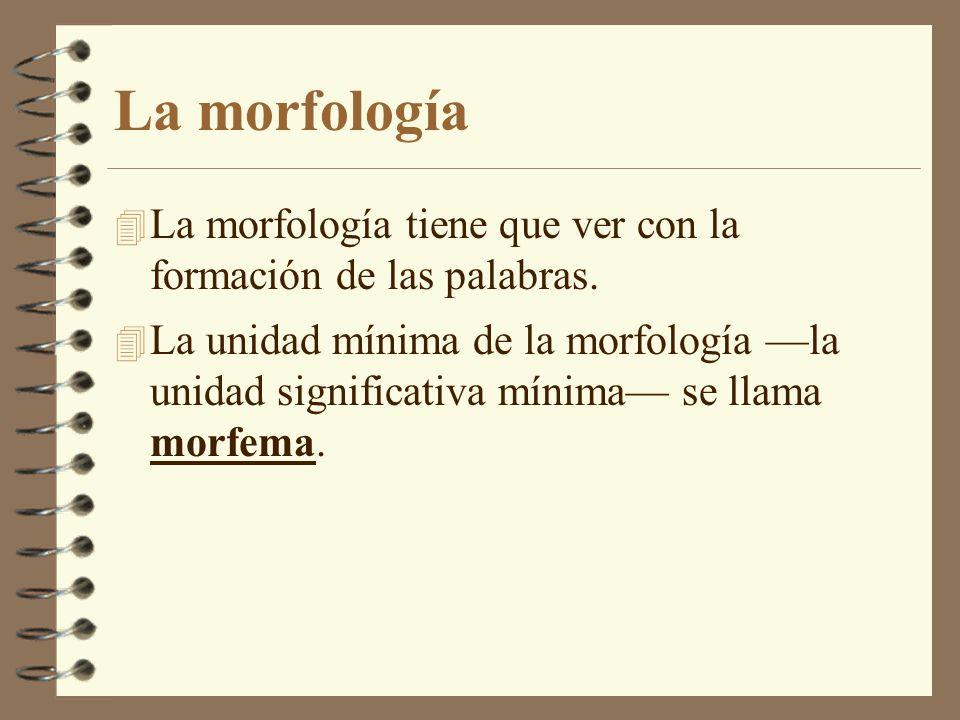 La morfología La morfología tiene que ver con la formación de las palabras.