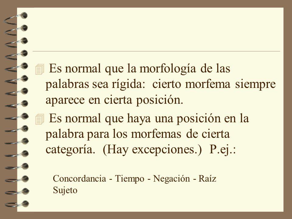 Es normal que la morfología de las palabras sea rígida: cierto morfema siempre aparece en cierta posición.