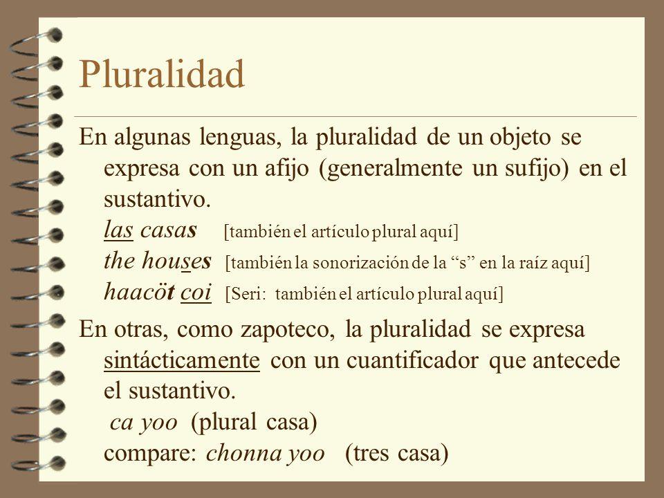 Pluralidad
