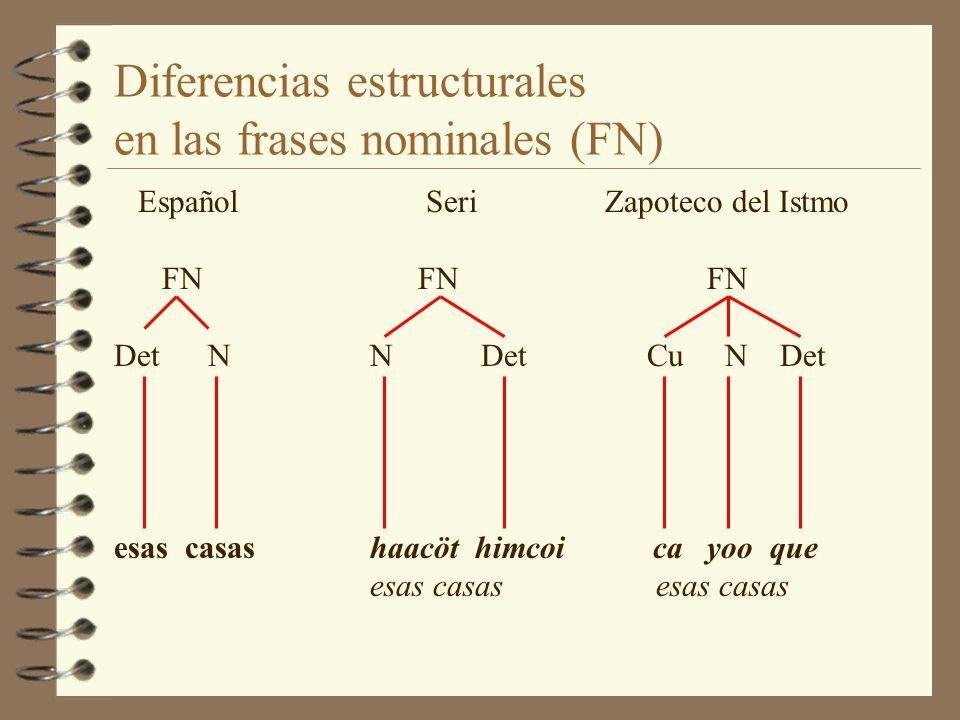 Diferencias estructurales en las frases nominales (FN)