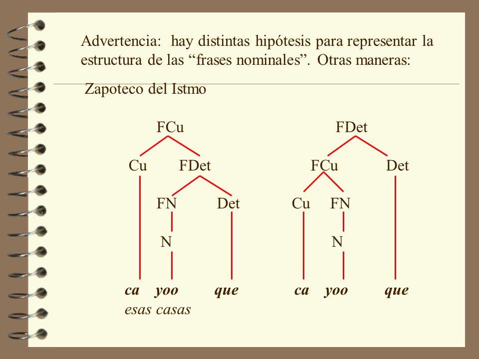 Advertencia: hay distintas hipótesis para representar la estructura de las frases nominales . Otras maneras:
