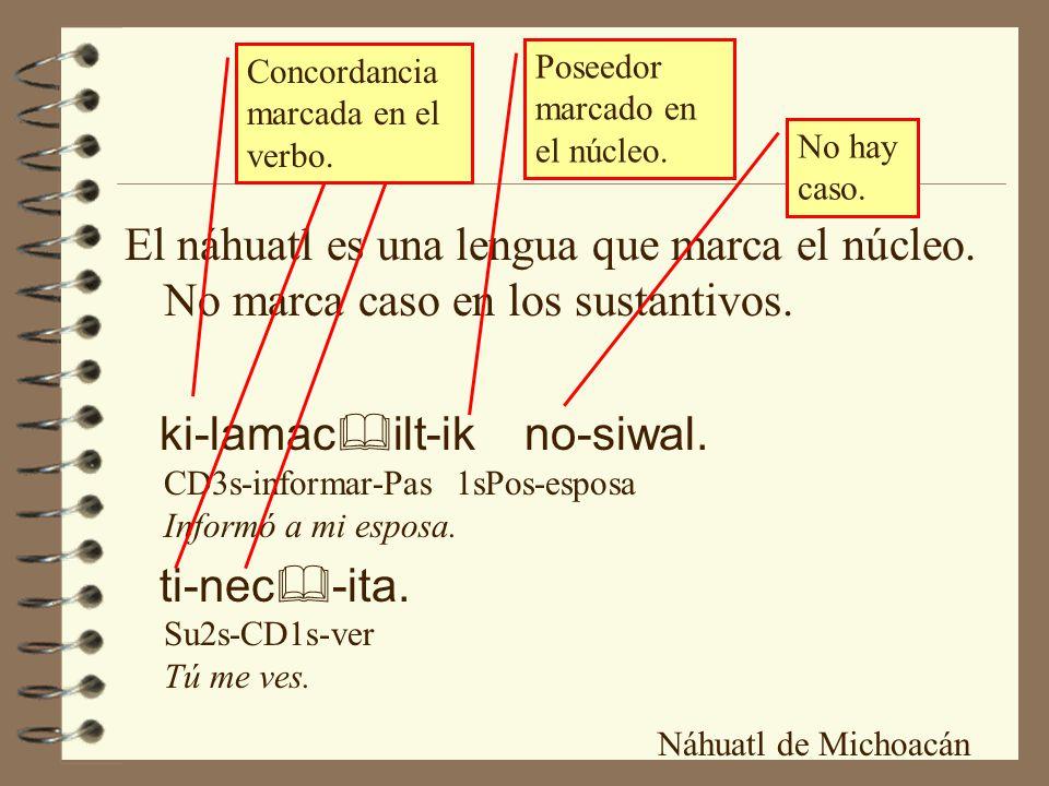 Concordancia marcada en el verbo.