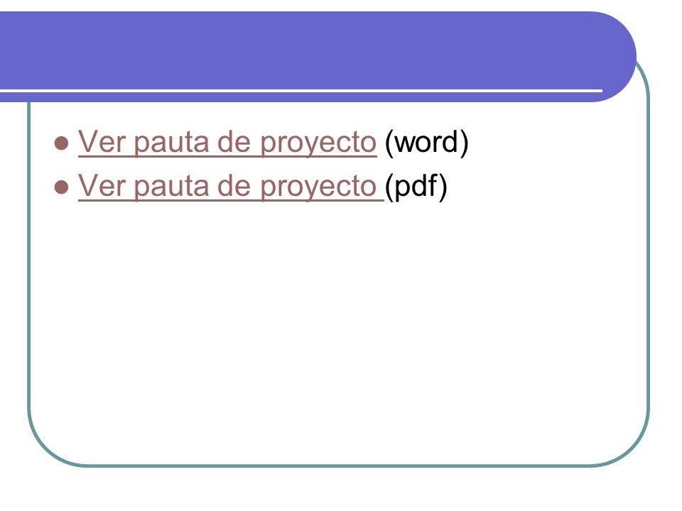 Ver pauta de proyecto (word)