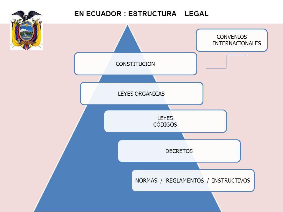 EN ECUADOR : ESTRUCTURA LEGAL