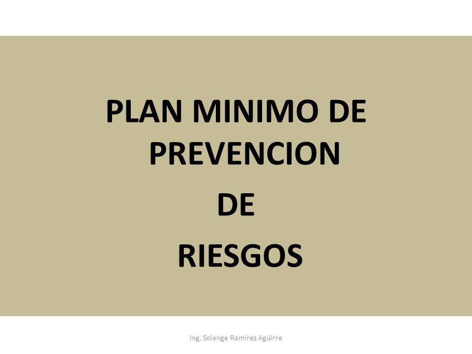 PLAN MINIMO DE PREVENCION DE RIESGOS