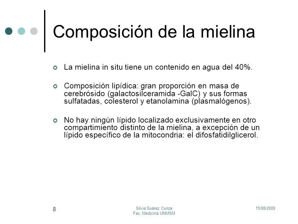 Composición de la mielina