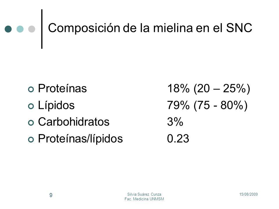Composición de la mielina en el SNC