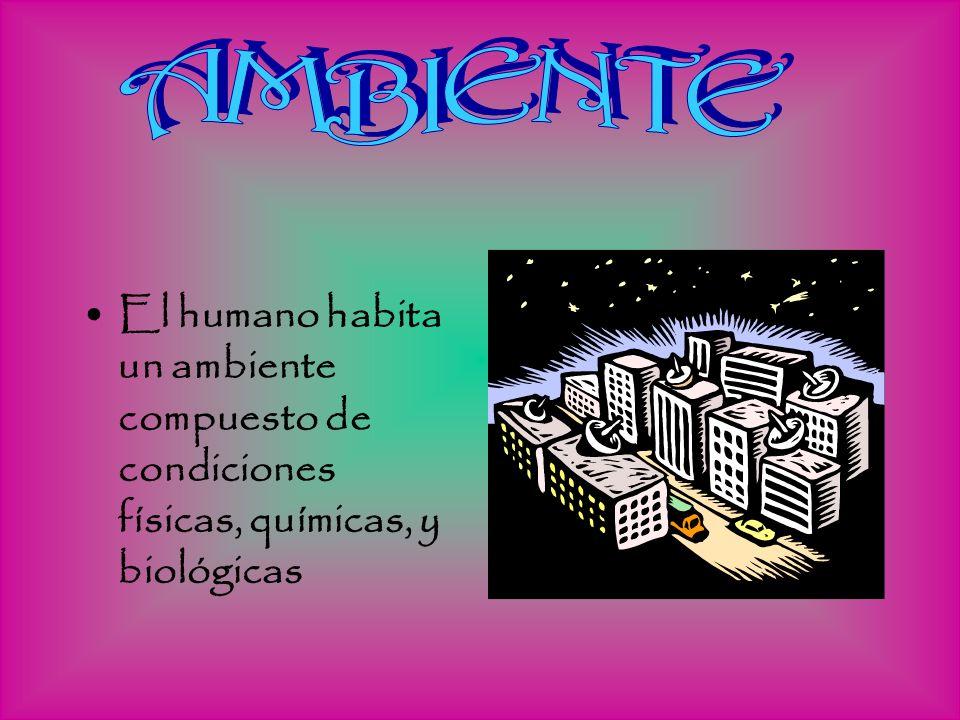 AMBIENTE El humano habita un ambiente compuesto de condiciones físicas, químicas, y biológicas