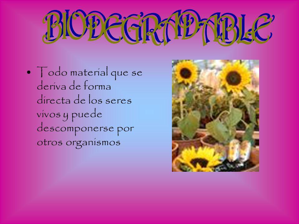 BIODEGRADABLE Todo material que se deriva de forma directa de los seres vivos y puede descomponerse por otros organismos.