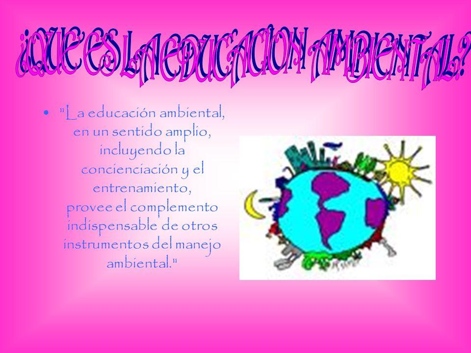 ¿QUE ES LA EDUCACION AMBIENTAL
