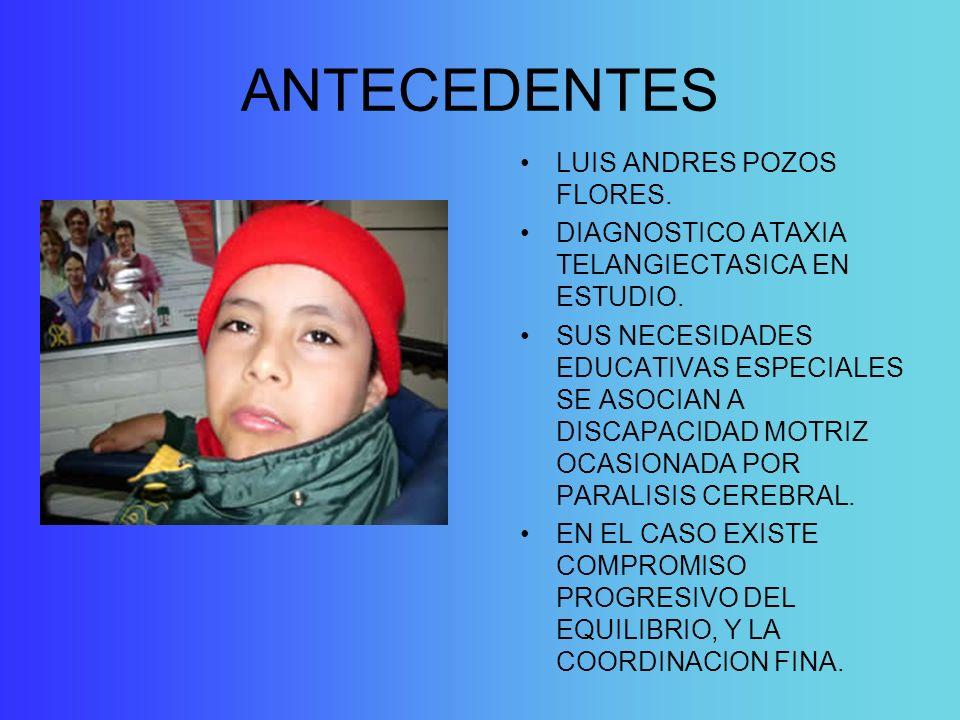 ANTECEDENTES LUIS ANDRES POZOS FLORES.