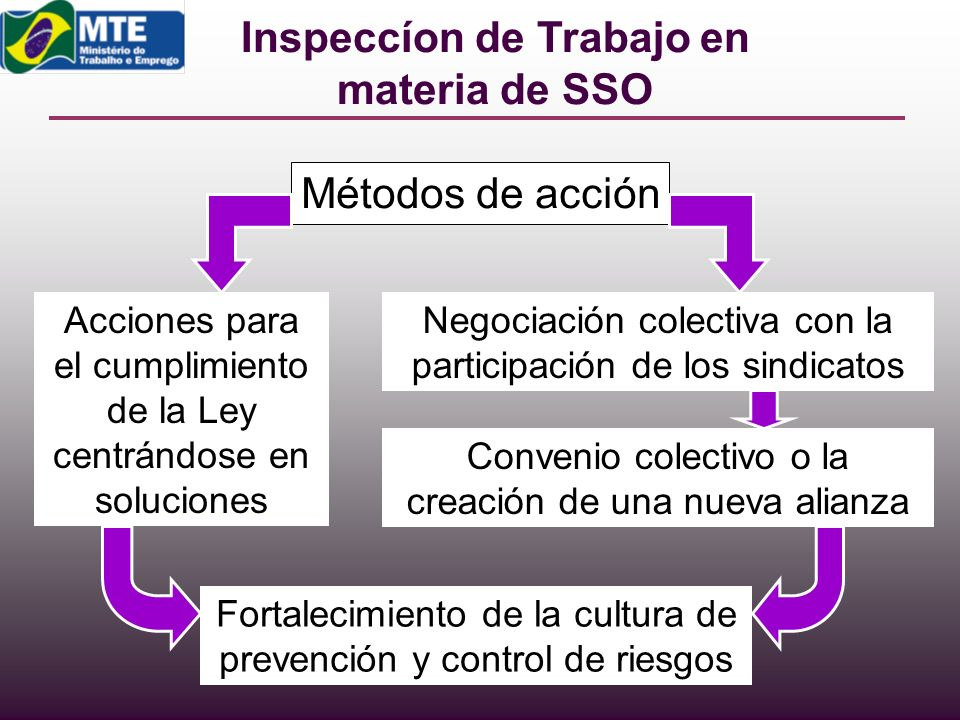 Inspeccíon de Trabajo en materia de SSO