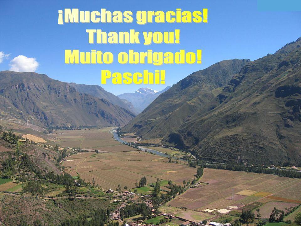 ¡Muchas gracias! Thank you! Muito obrigado! Paschi!