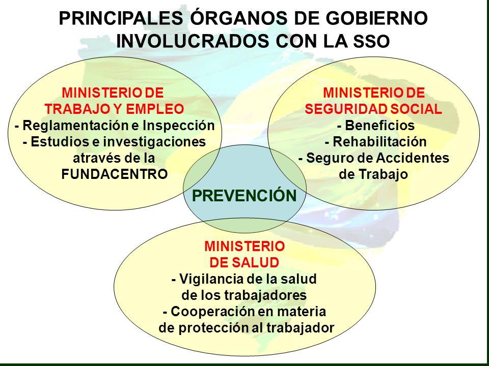 PRINCIPALES ÓRGANOS DE GOBIERNO INVOLUCRADOS CON LA SSO
