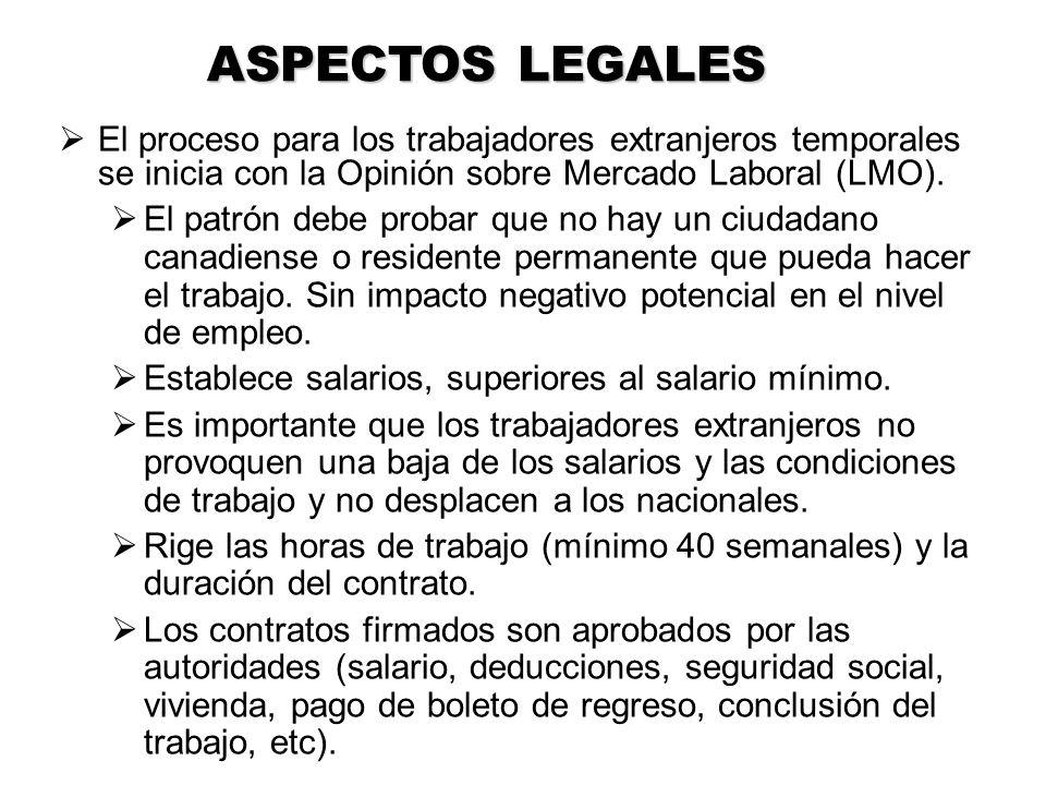 ASPECTOS LEGALES El proceso para los trabajadores extranjeros temporales se inicia con la Opinión sobre Mercado Laboral (LMO).