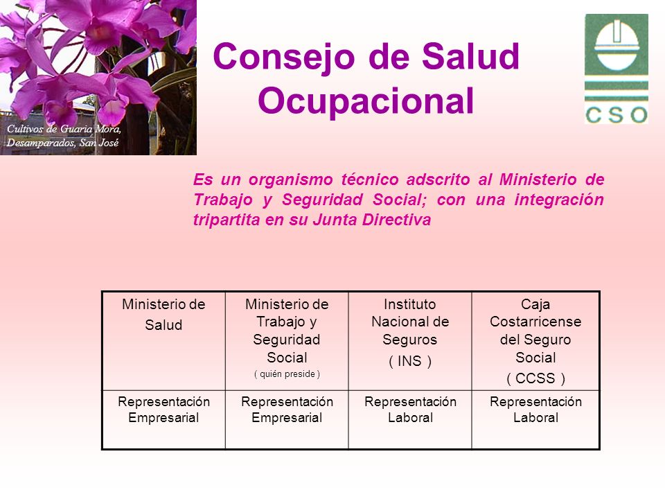 Consejo de Salud Ocupacional