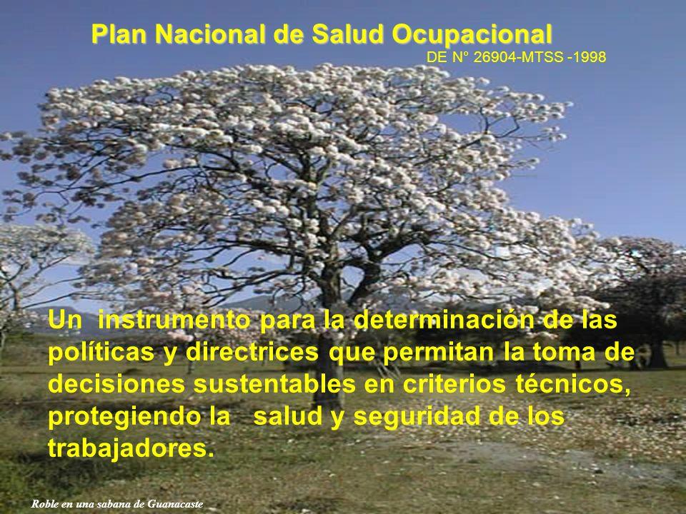 Plan Nacional de Salud Ocupacional DE N° 26904-MTSS -1998