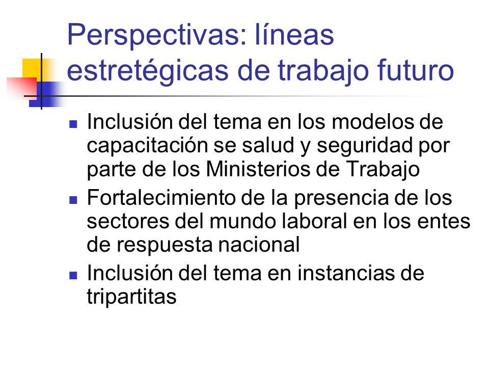 Perspectivas: líneas estretégicas de trabajo futuro