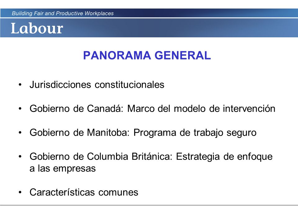 PANORAMA GENERAL Jurisdicciones constitucionales