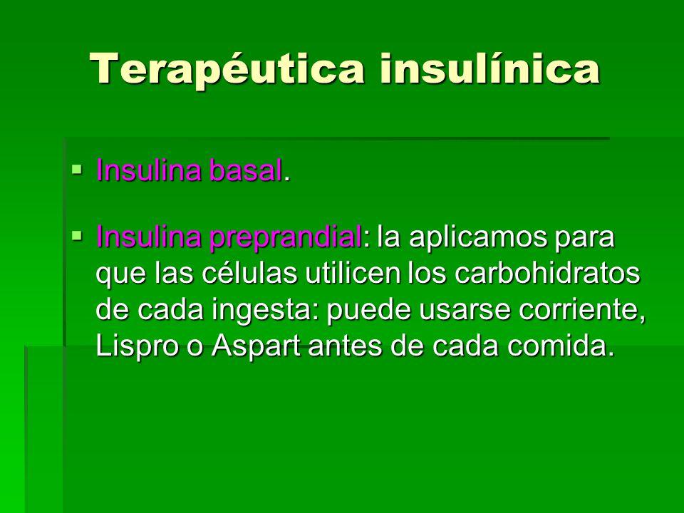 Terapéutica insulínica