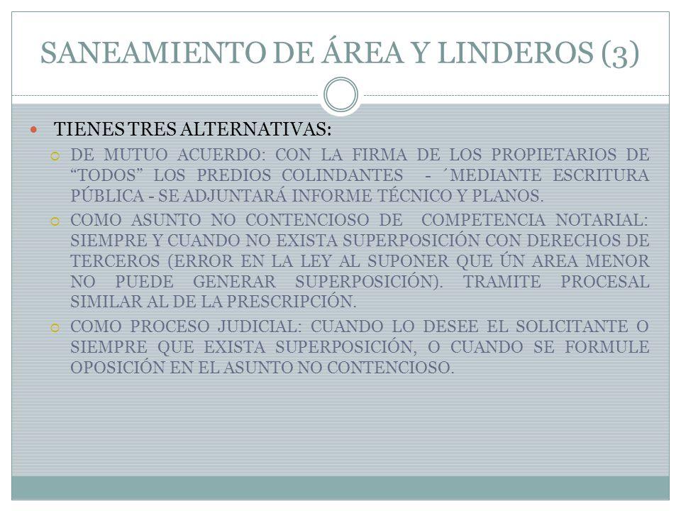SANEAMIENTO DE ÁREA Y LINDEROS (3)