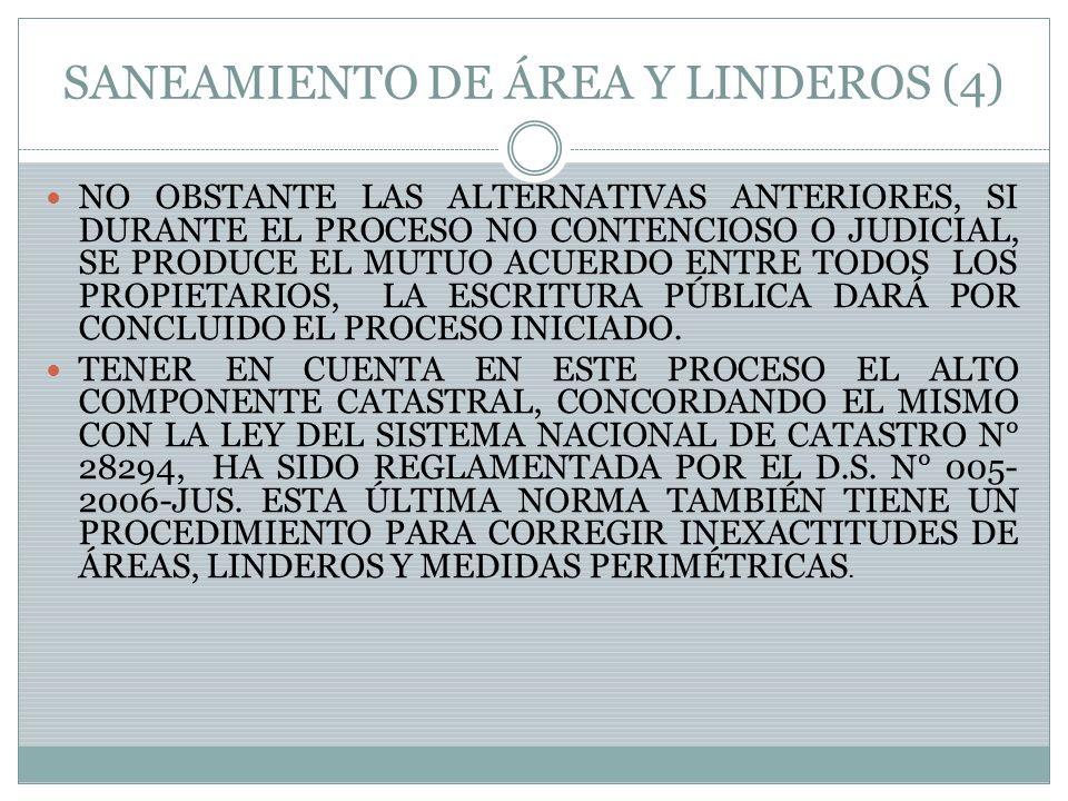 SANEAMIENTO DE ÁREA Y LINDEROS (4)