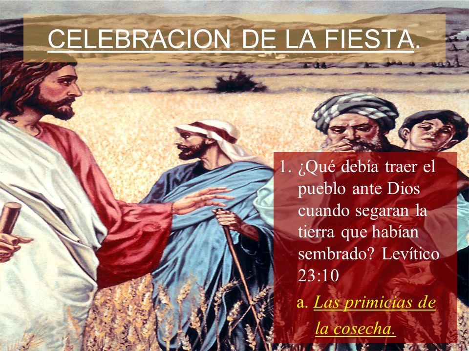 CELEBRACION DE LA FIESTA.