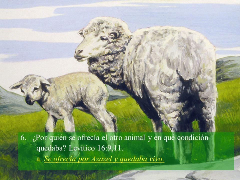 6. ¿Por quién se ofrecía el otro animal y en qué condición