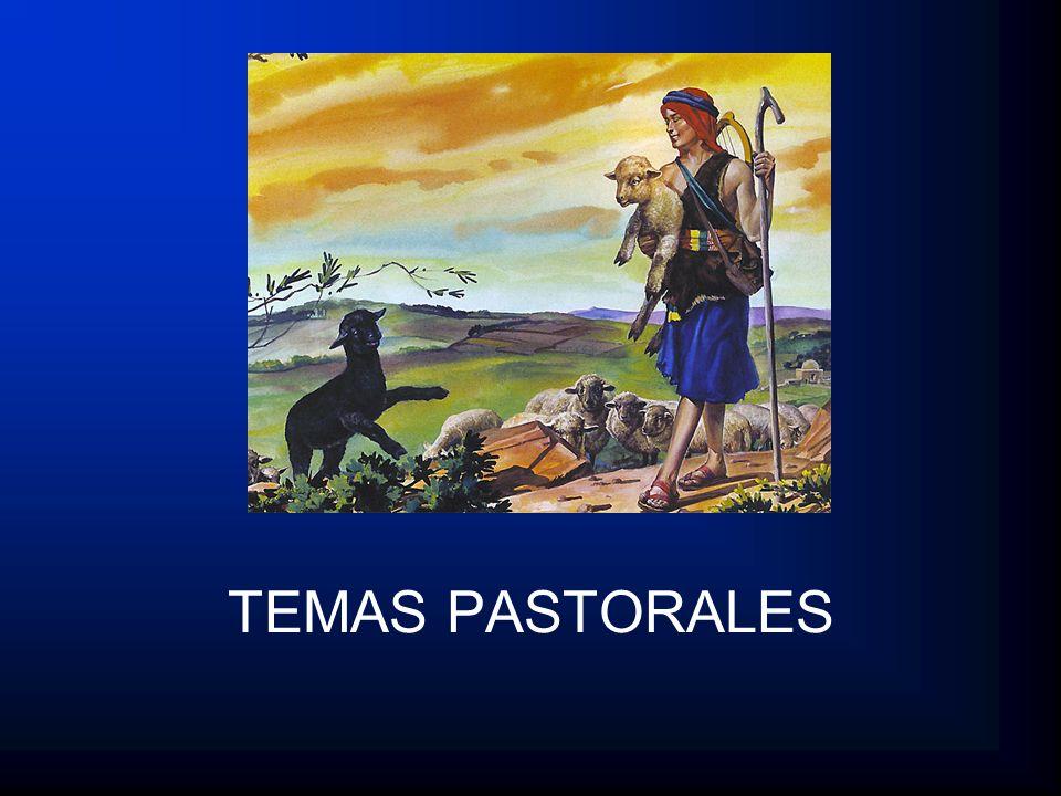 TEMAS PASTORALES