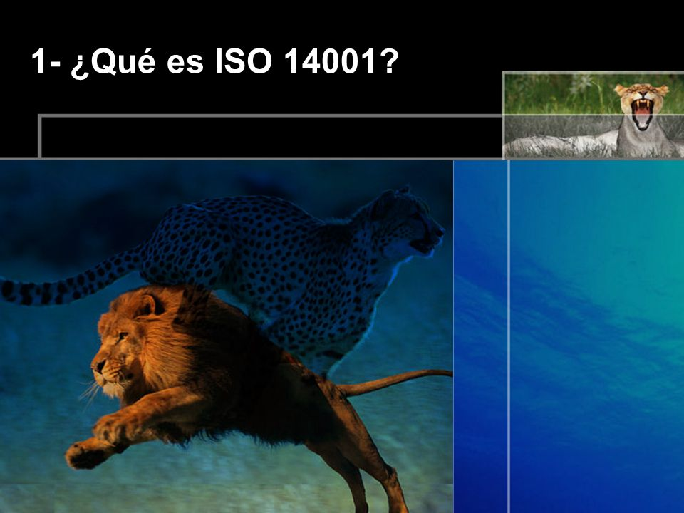 1- ¿Qué es ISO 14001