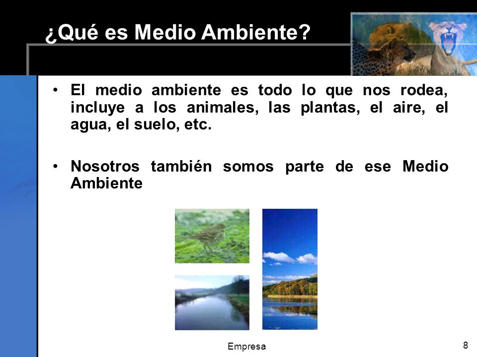 ¿Qué es Medio Ambiente El medio ambiente es todo lo que nos rodea, incluye a los animales, las plantas, el aire, el agua, el suelo, etc.