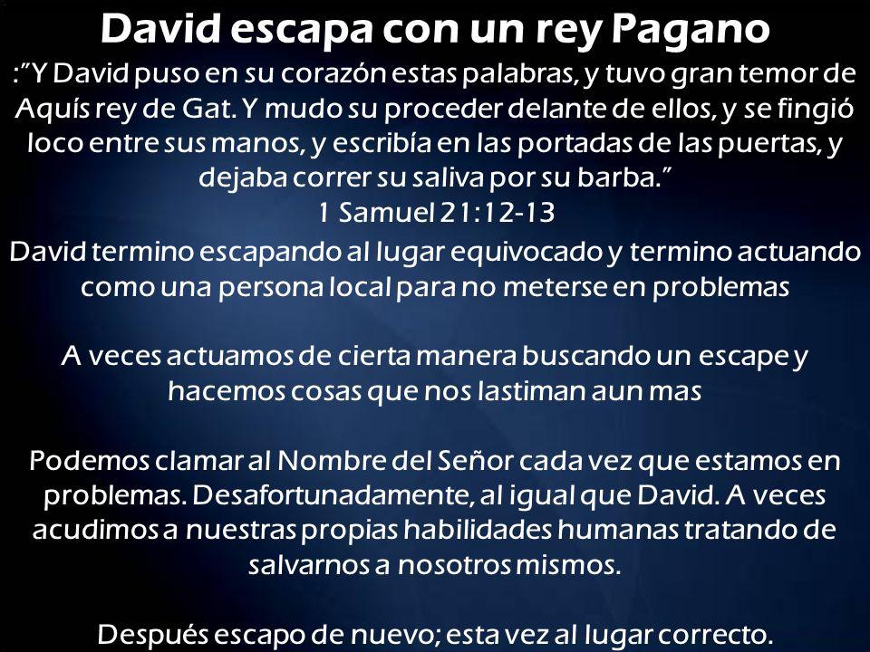 David escapa con un rey Pagano