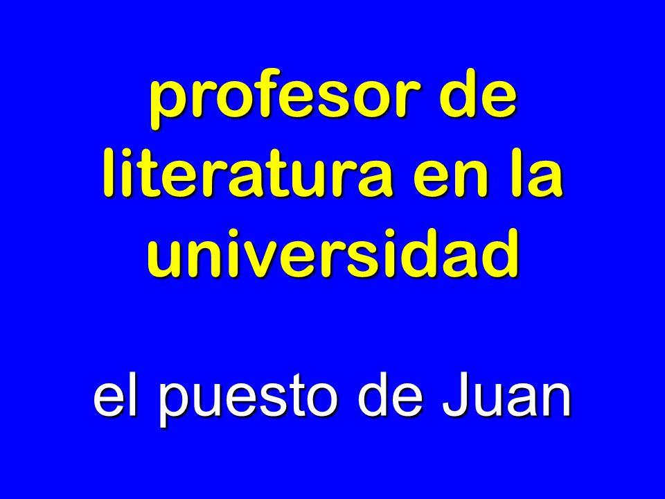 profesor de literatura en la universidad