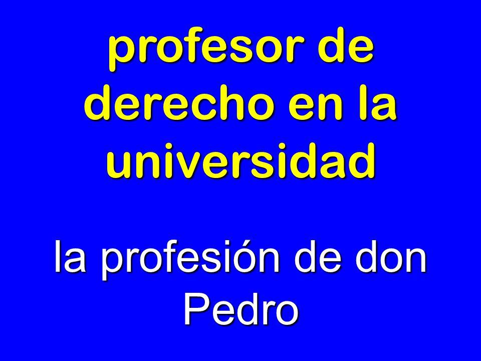profesor de derecho en la universidad