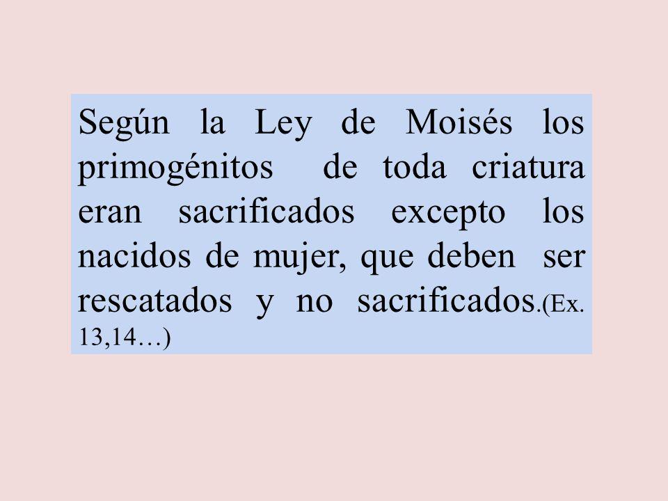 Según la Ley de Moisés los primogénitos de toda criatura eran sacrificados excepto los nacidos de mujer, que deben ser rescatados y no sacrificados.(Ex.