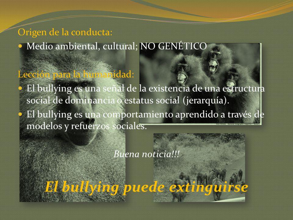 El bullying puede extinguirse