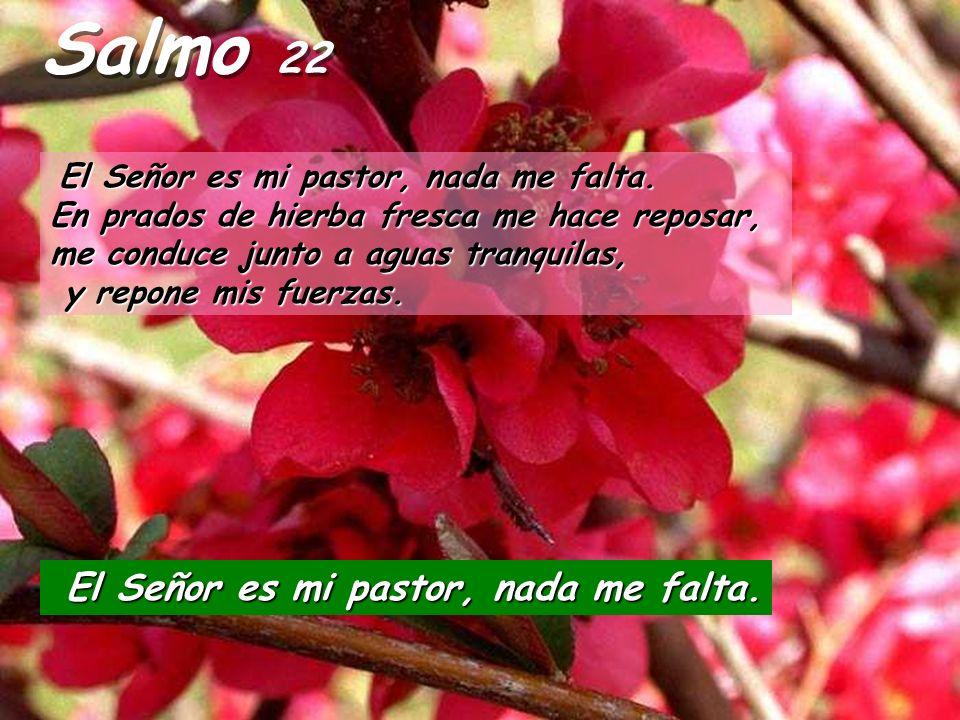 Salmo 22 El Señor es mi pastor, nada me falta.